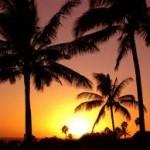 Consideraciones antes de salir de vacaciones