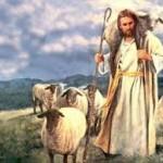 Diferencia entre Pastor y pastores