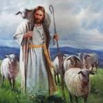 Primero puerta y después pastor