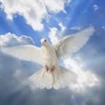 Caminen según el Espíritu: Pentecostés