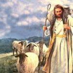 Jesucristo rey, el buen pastor