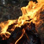 Pentecostés: Espíritu Santo Dios y Amigo